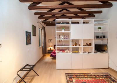 COSY NEST APARTMENT, a geral view of the main room