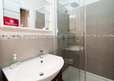 COSY NEST APARTMENT, the bathroom with the large shower